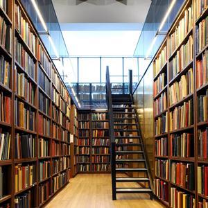 Библиотеки Дивного